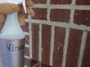 Original-Brick-Fireplace_Spray-Vinegar_s3x4_lead